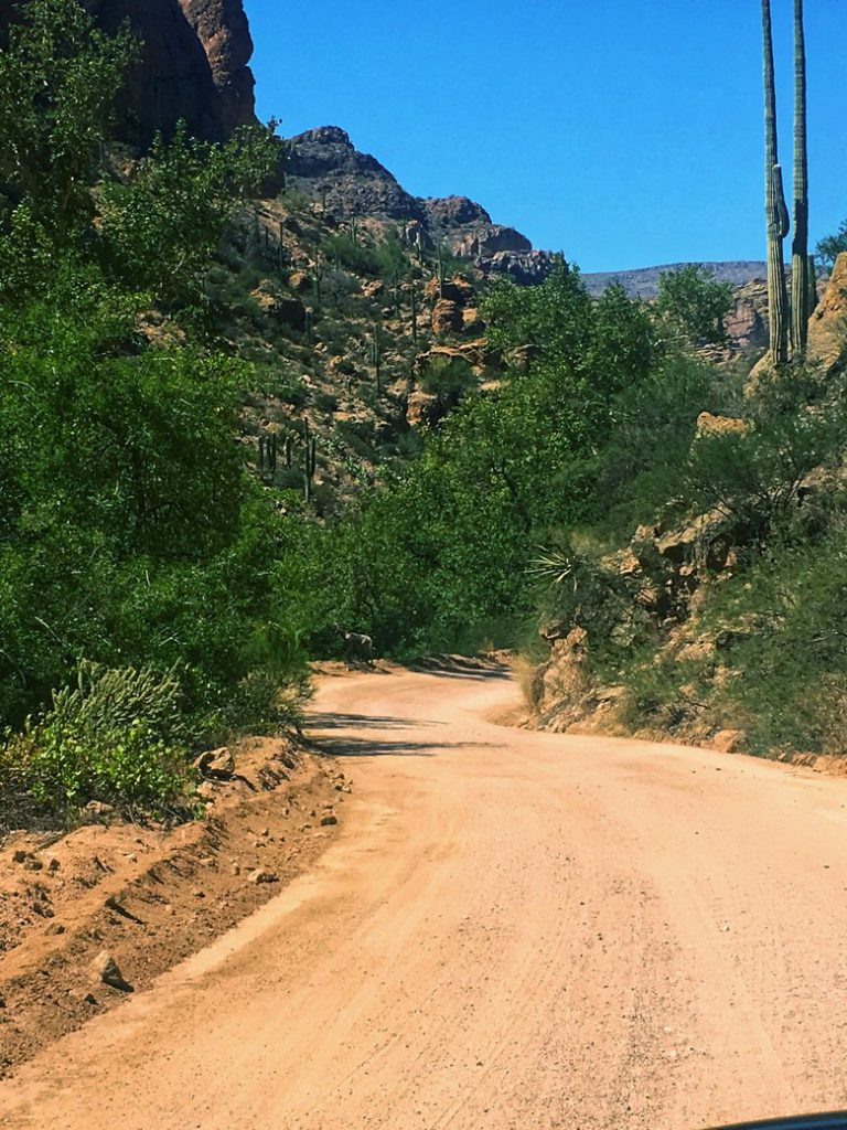 Driving the Apache Trail