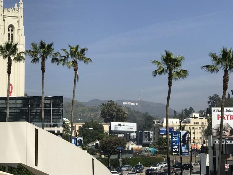 WhereGalsWander Hollywood