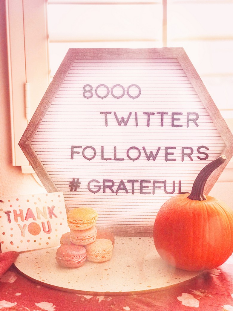 Thank you to our Twitter Travel Tribe for helping us reach this giant milestone of 8,000 Followers! Follow us at @GalsWander WhereGalsWander.com