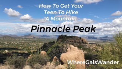 WhereGalsWander.com: Hiking Pinnacle Peak, Arizona family travel (16)