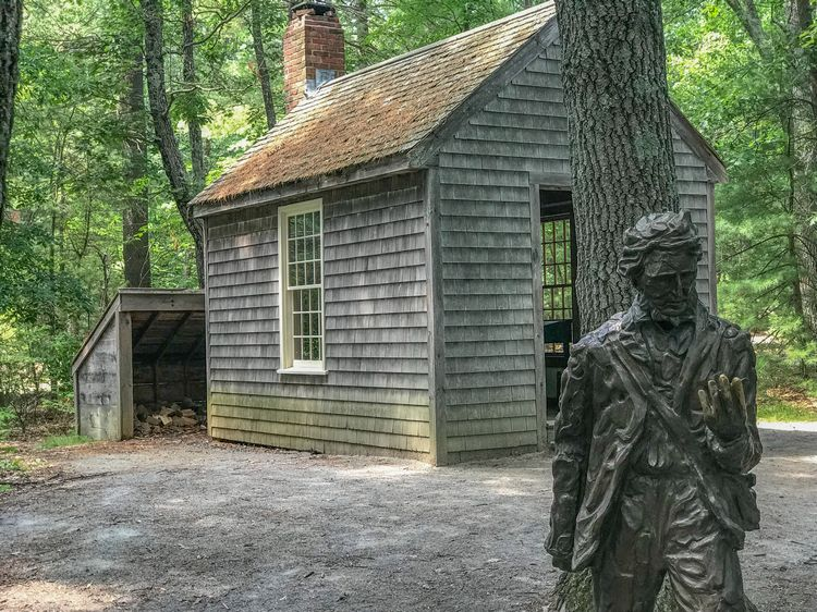 Thoreau's Replica Cabin in Walden Woods WhereGalsWander