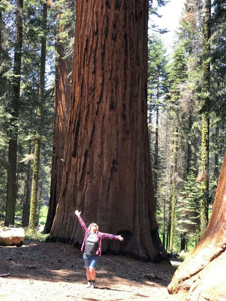 Zanne at Sequoia National Park.
