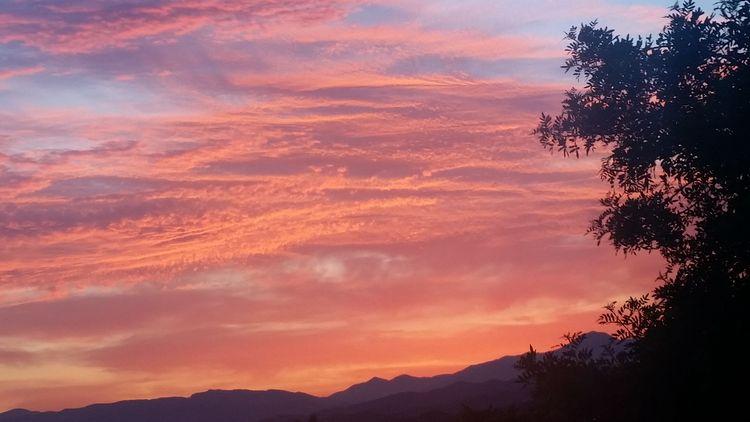 Santa Clarita California Sunset (Zanne's backyard)