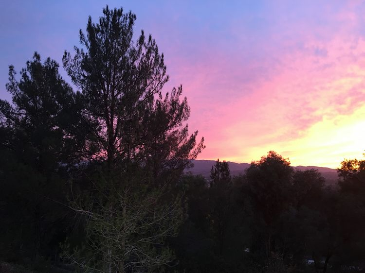 sunset Los Angeles LA WhereGalsWander