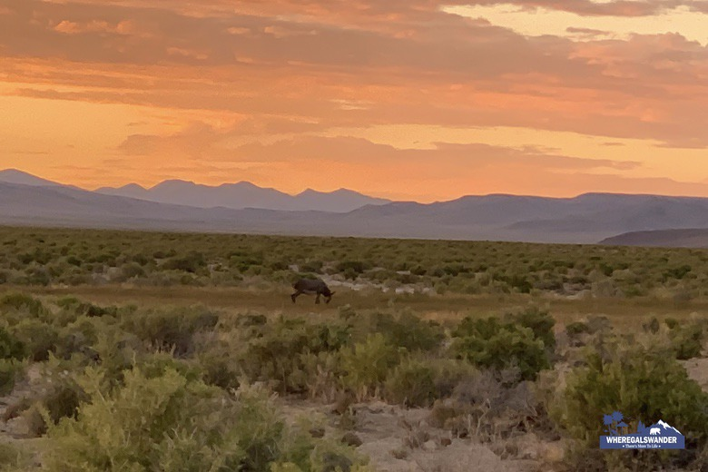Sunsets, Hot Springs, Wild Horses The Loneliest Road in America Road Trip by WhereGalsWander