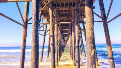 Favorite social beach piers