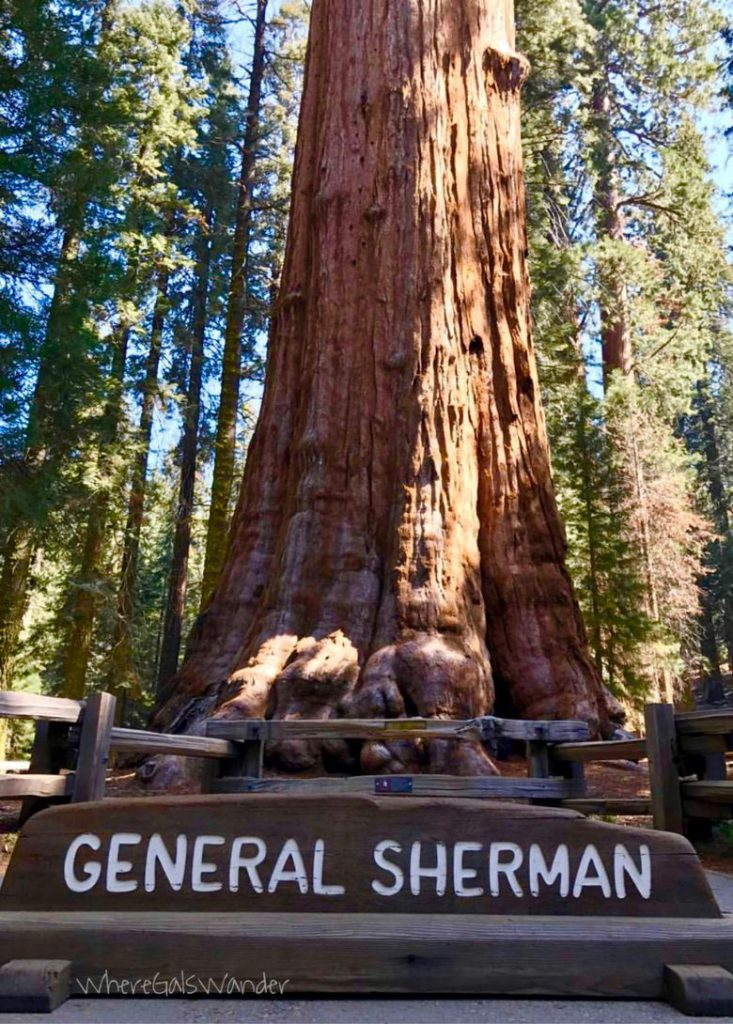 General Sherman, Kings's Canyon National Park Top 10 National Parks National Parks Top 10