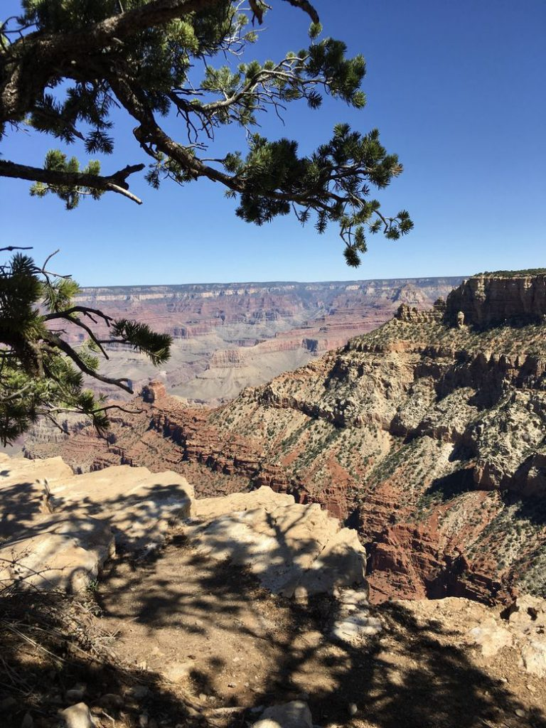 Grand Canyon National Park, one of our favorite national parks. WhereGalsWander