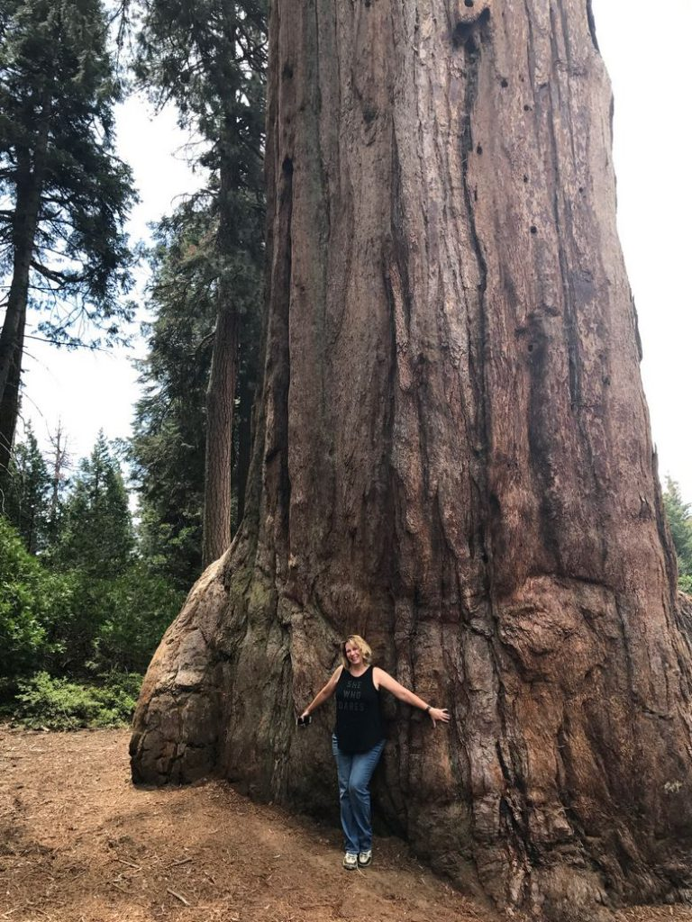 Zanne, hugging that giant sequoia WhereGalsWander