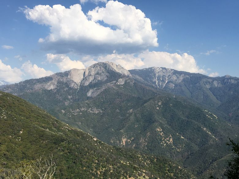 Sequoia National Park WhereGalsWander
