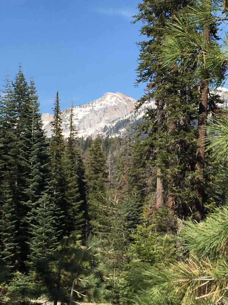 The Majestic Kings Canyon National Park  WhereGalsWander National Parks Top 10